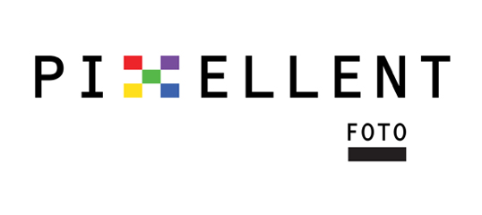 Pixellent logo