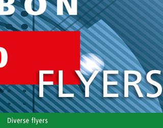 diverse_flyers_2